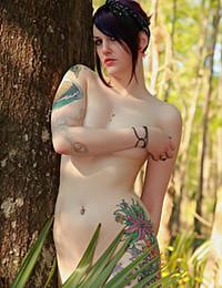 David Nudes - No Dress Needed