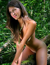 Met Models - Foresta